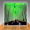 Panoramic Lightboxes 8ft w & 10ft w